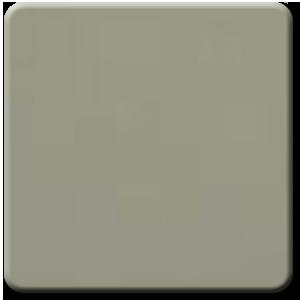 Pacific Gray